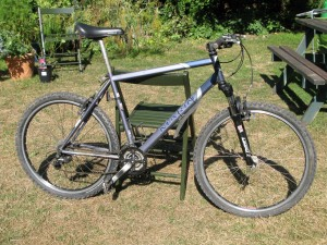 Marin Muirwoods - Hybrid cycle