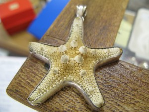 A starfish pendant mounted in silvered