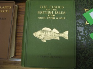 The Fishes of the British Isles
