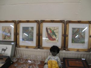 Lot 11 - Four prints of exotic birds - Sold for £35